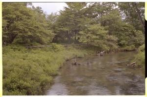 Leica M3, 50mm f2 Summicron, Kodak 160NC, Yukawa River