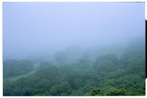 Fog lifting at Kirifuri Highlands (Leica M6, 50mm Summicron)