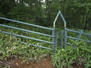Cow-proof gates (Ricoh GR Digital)