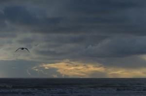 Sunset over Otaki Beach (Nikon D2H + 40mm f2 ULTRON)