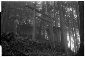Temple I encountered in the mist somewhere in the forest, spooky as anything you'd encouter in the fog! (Leica M2 + Summicron 35mm ASPH)