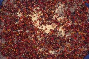 Drying Chillies (Nikon D2H + 40mm f2 ULTRON)