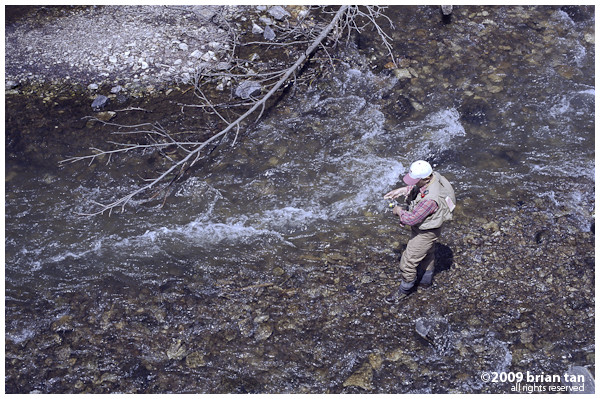 Fly Fisherman on Yukawa River