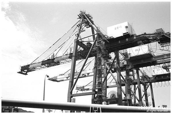Port cranes up close