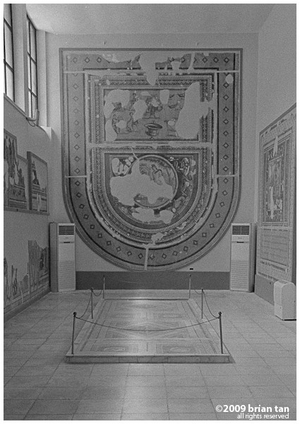 Museum Exhibit 5