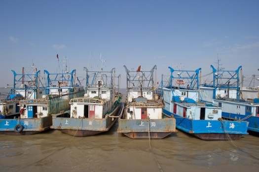 Fishing trawlers on Hengsha Island
