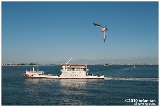 DSC0955-2010-09-23-21-15.jpg