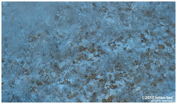 DSC9567-LR-2011-01-6-05-28.jpg